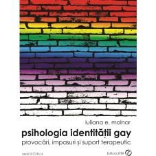 Psihologia identității gay...